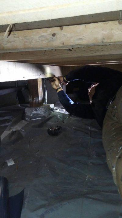 床下の補強材設置をしている写真